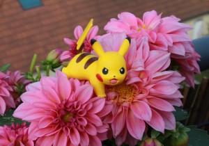 Pokémon kräver powerbanks
